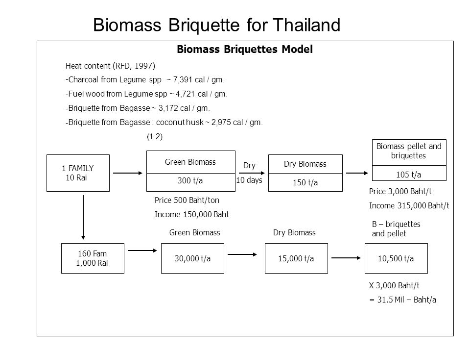 Biomass Briquettes Model