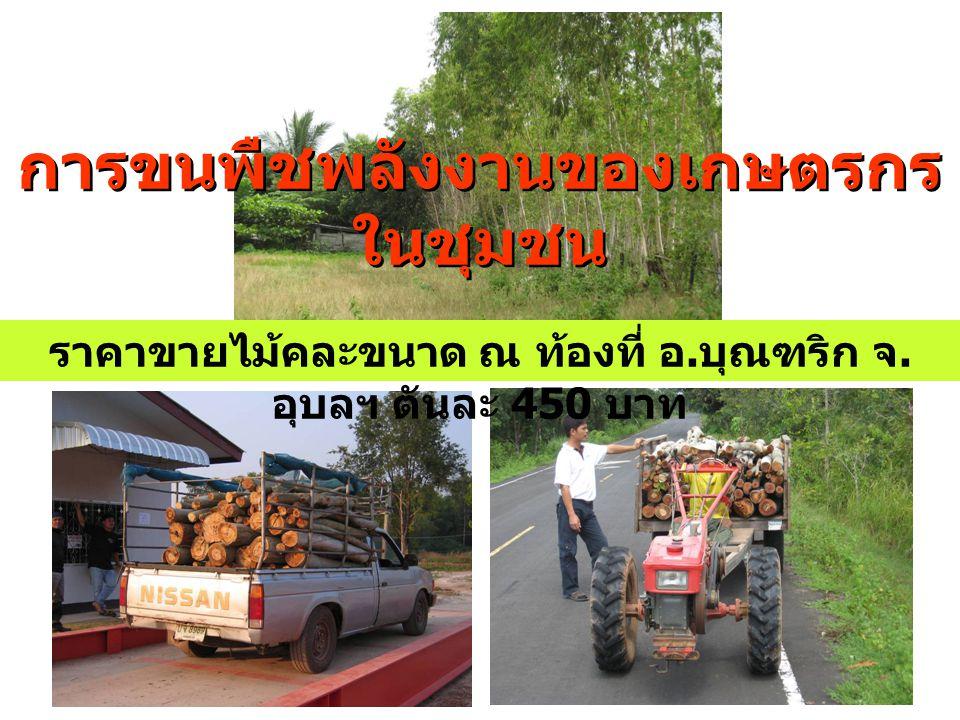 การขนพืชพลังงานของเกษตรกรในชุมชน