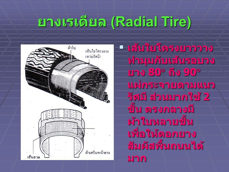 ยางเรเดียล (Radial Tire)