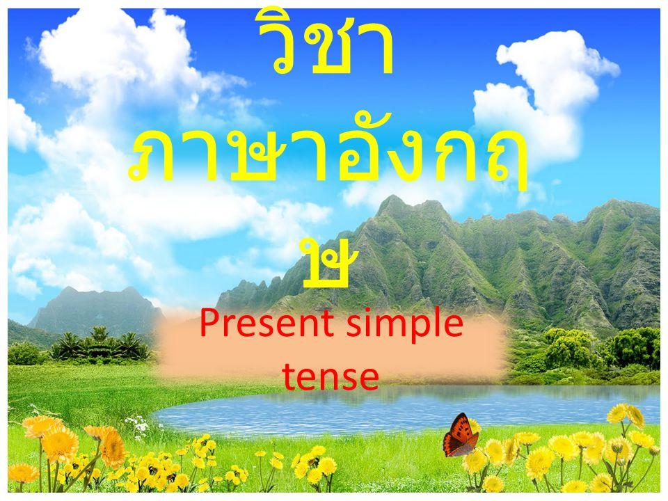 วิชา ภาษาอังกฤษ Present simple tense