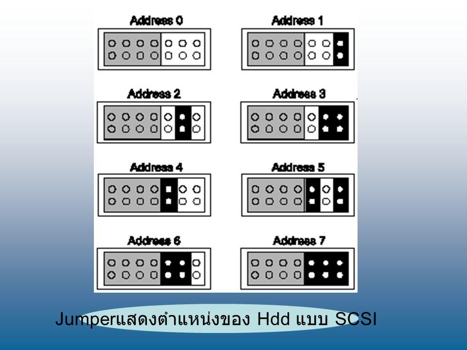 Jumperแสดงตำแหน่งของ Hdd แบบ SCSI