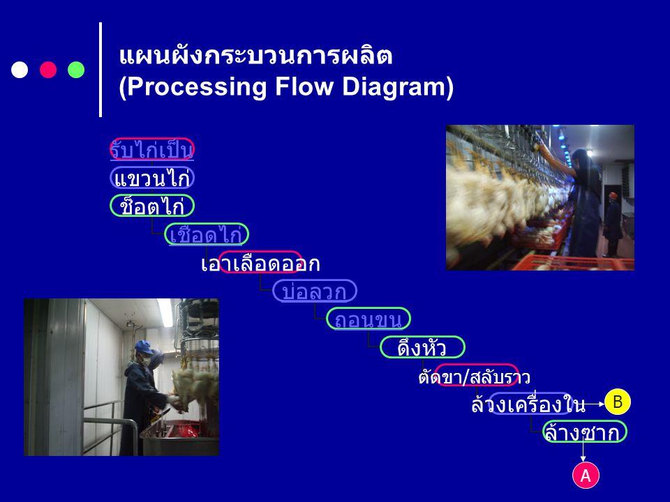 แผนผังกระบวนการผลิต (Processing Flow Diagram)