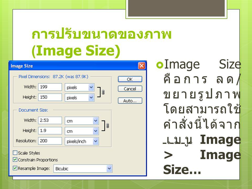 การปรับขนาดของภาพ (Image Size)