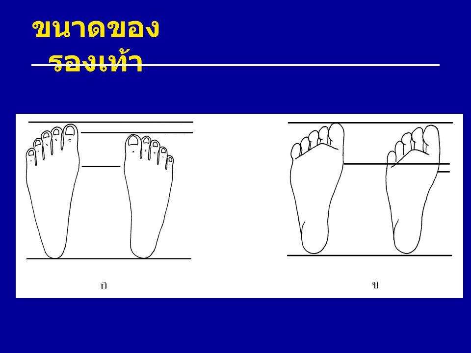 ขนาดของรองเท้า