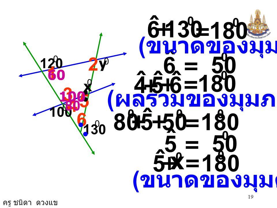 6 ˆ. + 130. = 180. (ขนาดของมุมตรง) 6. ˆ. = 50. 2. 120. y. 1. 60. 5. ˆ. 6. + = 180.
