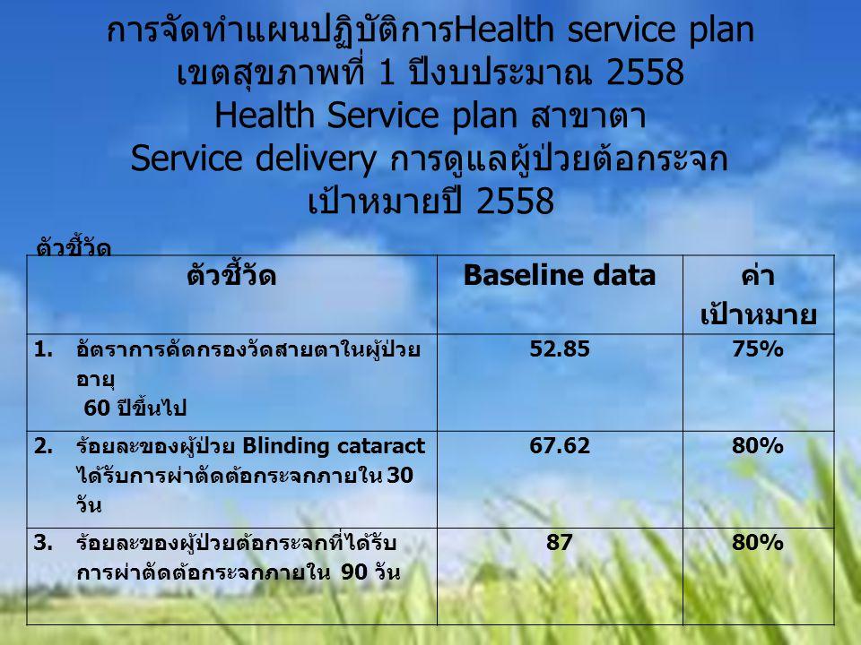 การจัดทำแผนปฏิบัติการHealth service plan