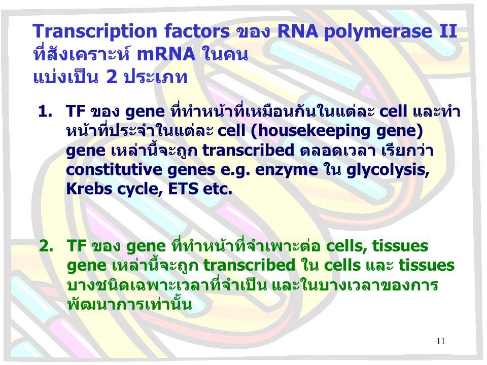 Transcription factors ของ RNA polymerase II ที่สังเคราะห์ mRNA ในคน
