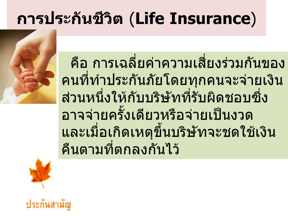 การประกันชีวิต (Life Insurance)