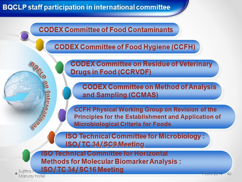 BQCLP staff participation in international committee