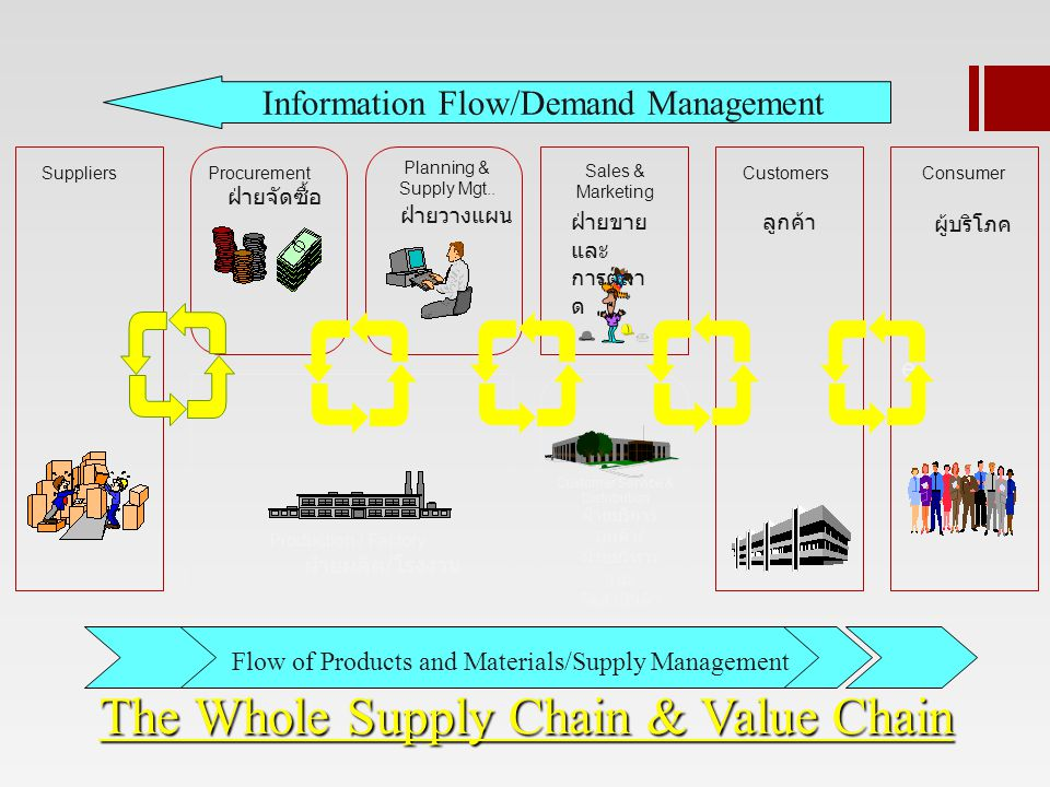 The Whole Supply Chain & Value Chain