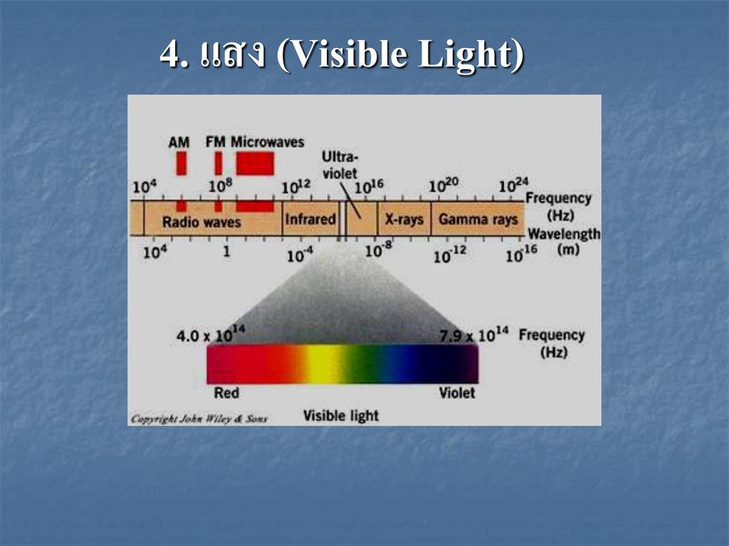 4. แสง (Visible Light)