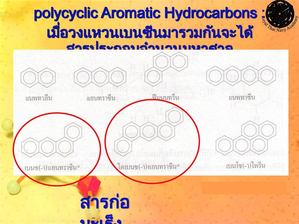 สารก่อมะเร็ง polycyclic Aromatic Hydrocarbons :
