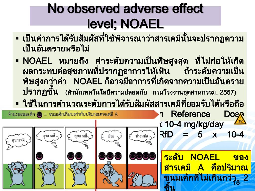 No observed adverse effect level; NOAEL