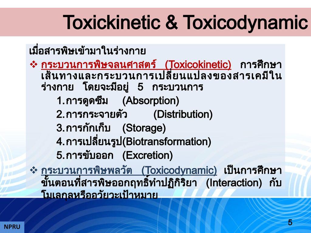 Toxickinetic & Toxicodynamic
