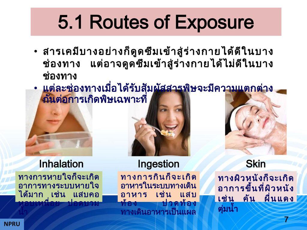 5.1 Routes of Exposure สารเคมีบางอย่างก็ดูดซึมเข้าสู่ร่างกายได้ดีในบางช่องทาง แต่อาจดูดซึมเข้าสู่ร่างกายได้ไม่ดีในบางช่องทาง.
