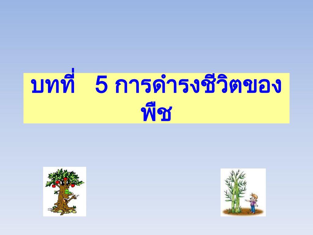 บทที่ 5 การดำรงชีวิตของพืช