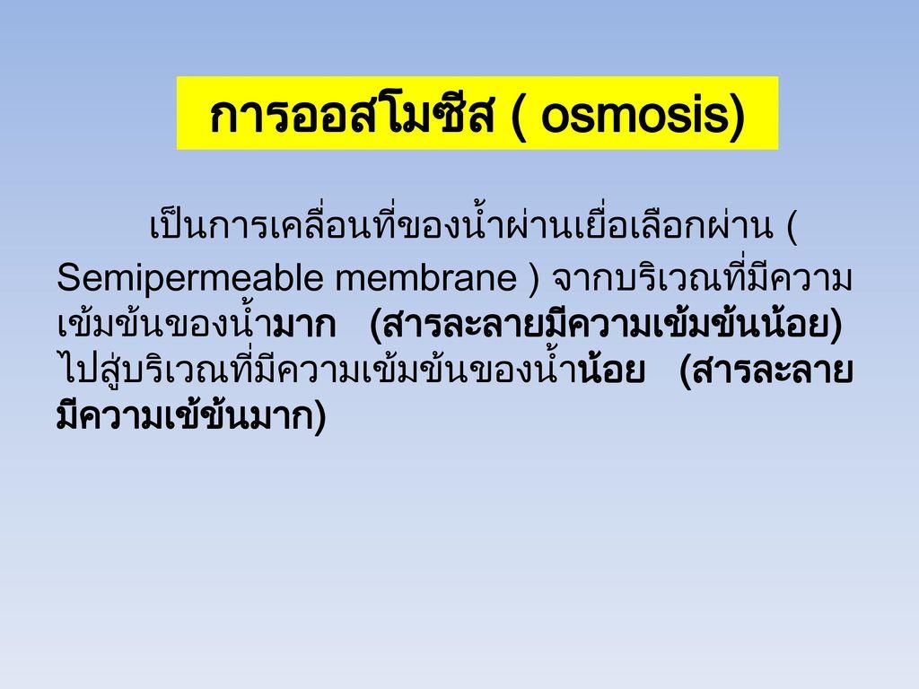 การออสโมซีส ( osmosis)
