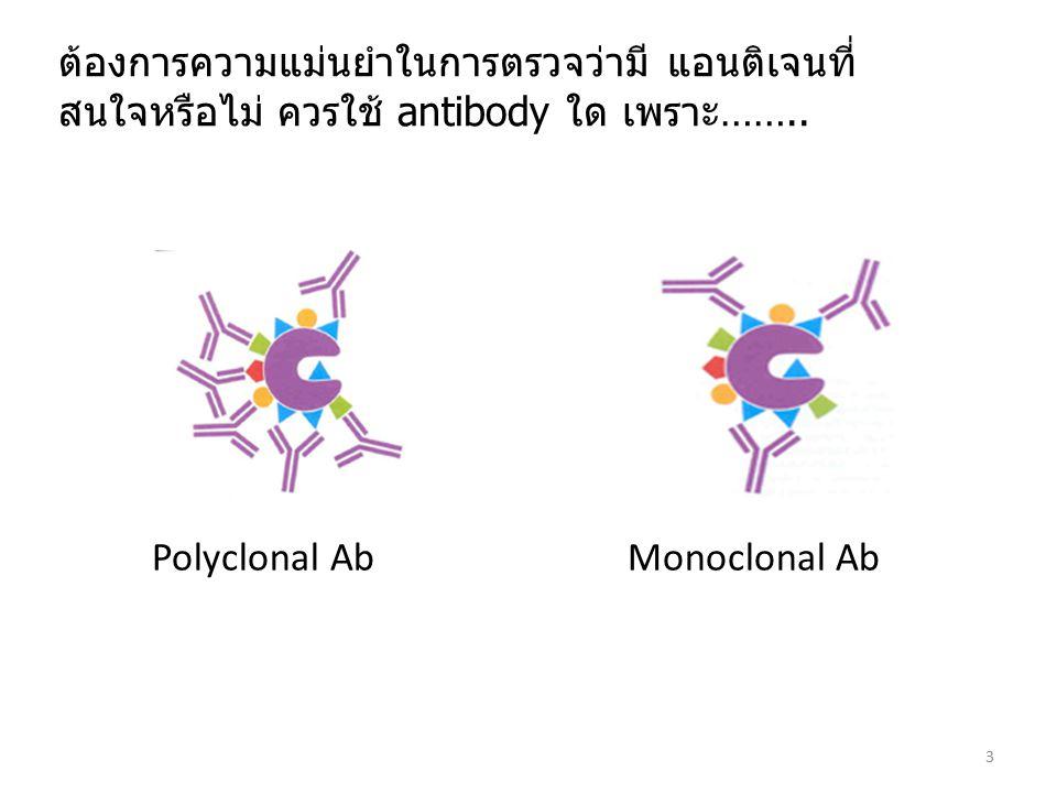 Antibody & reagent selection