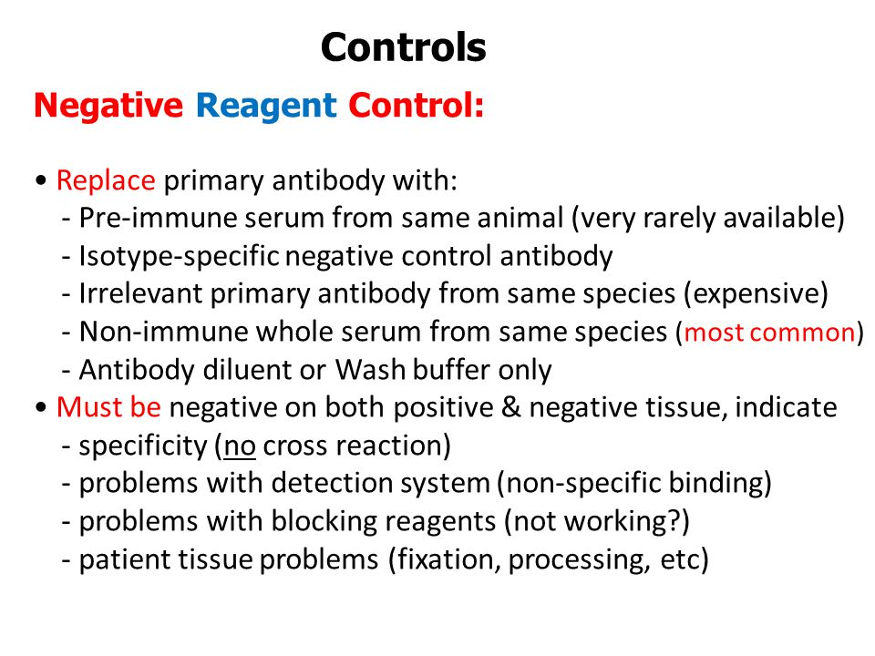 Controls Negative Reagent Control: • Replace primary antibody with: