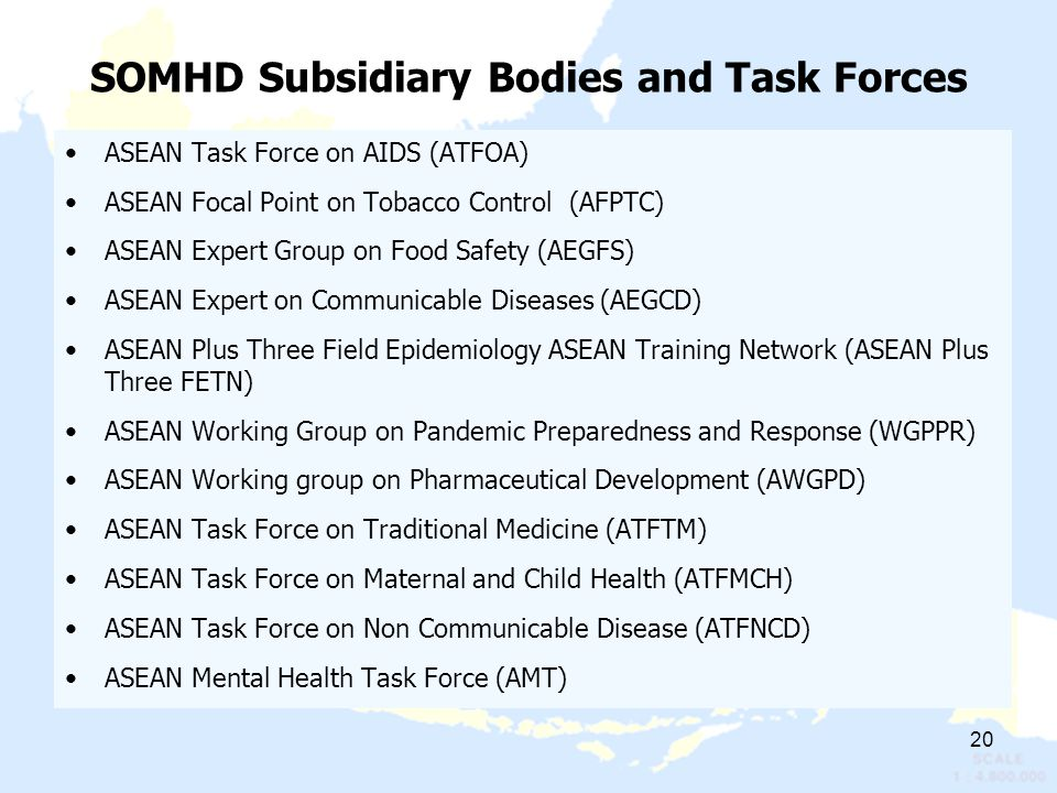 SOMHD Subsidiary Bodies and Task Forces