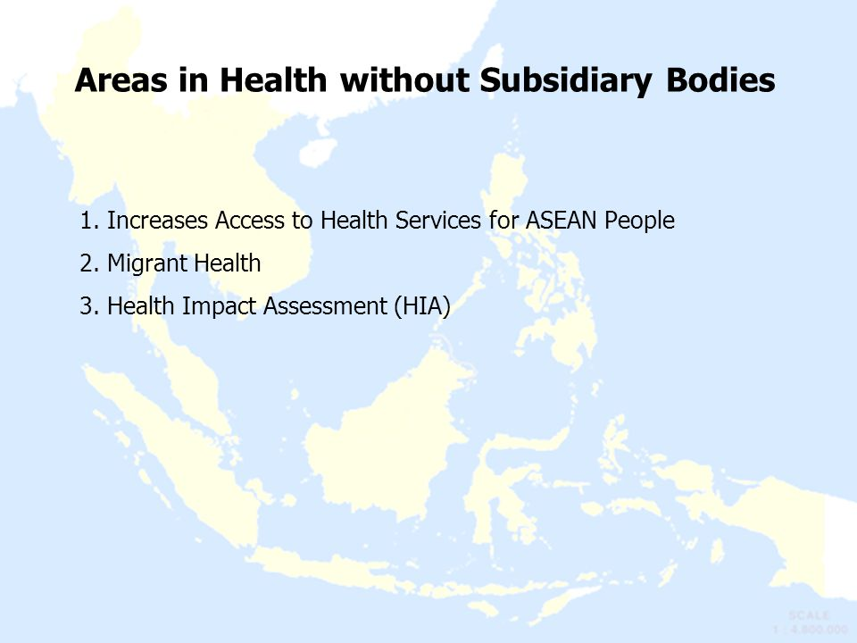 Areas in Health without Subsidiary Bodies