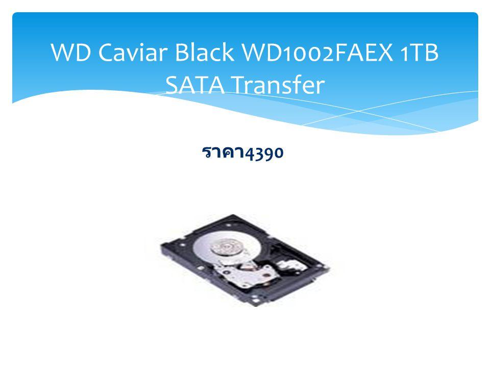 WD Caviar Black WD1002FAEX 1TB SATA Transfer