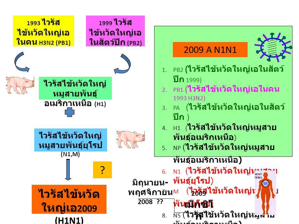 ไวรัสไข้หวัดใหญ่เอ2009 (H1N1)