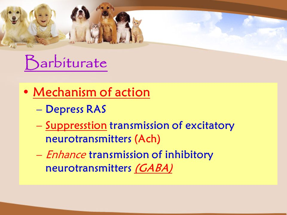 Barbiturate Mechanism of action Depress RAS