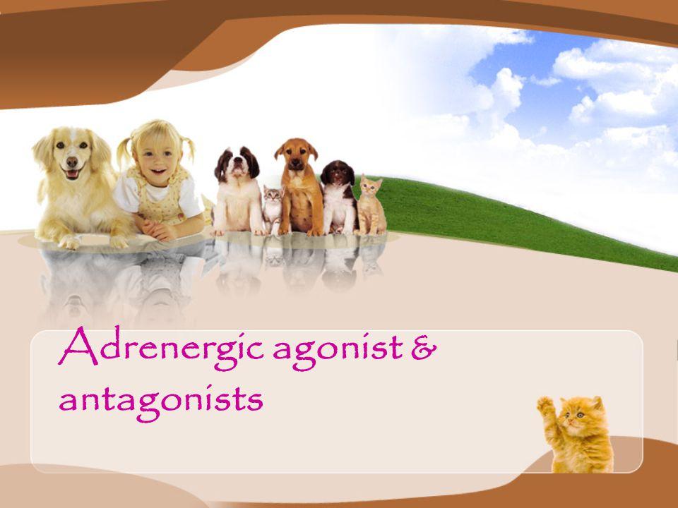 Adrenergic agonist & antagonists