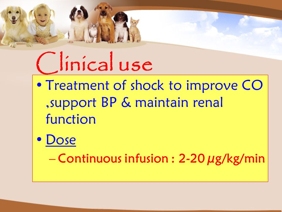 Clinical use Treatment of shock to improve CO ,support BP & maintain renal function.