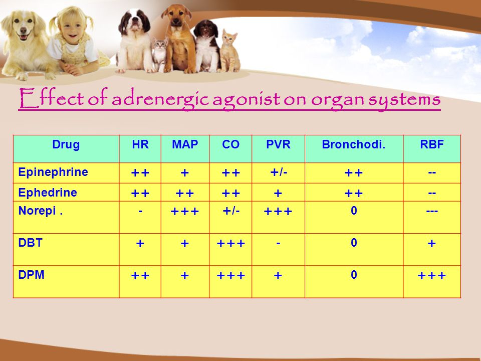 Effect of adrenergic agonist on organ systems