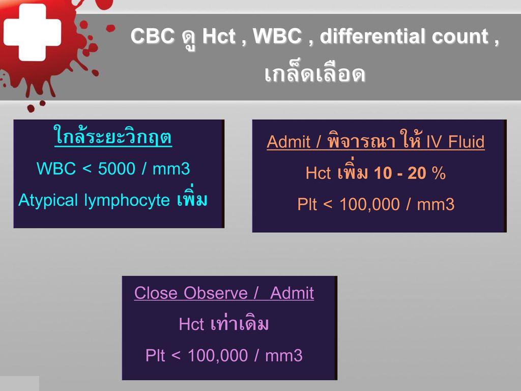Wbc 8256 / mm3 < 5000 / mm3
