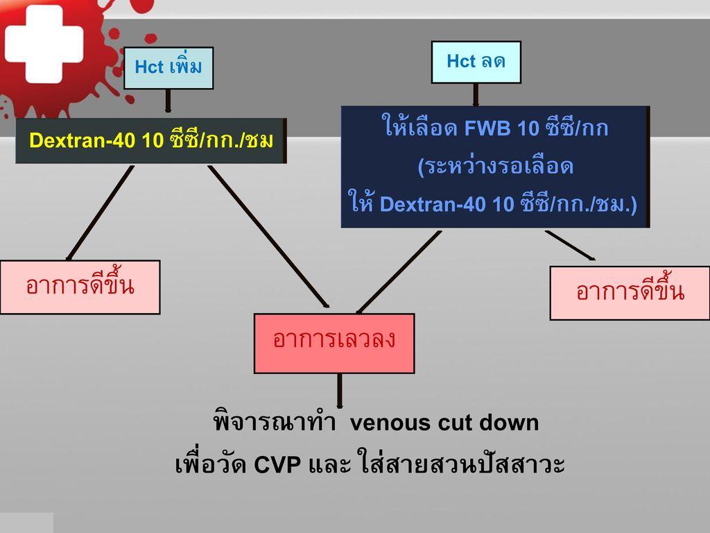 การปรึกษาการดูแลผู้ป่วยไข้เลือดออก