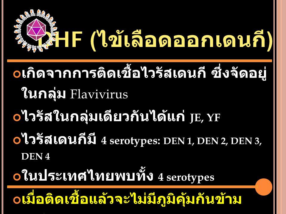 DHF (ไข้เลือดออกเดนกี)