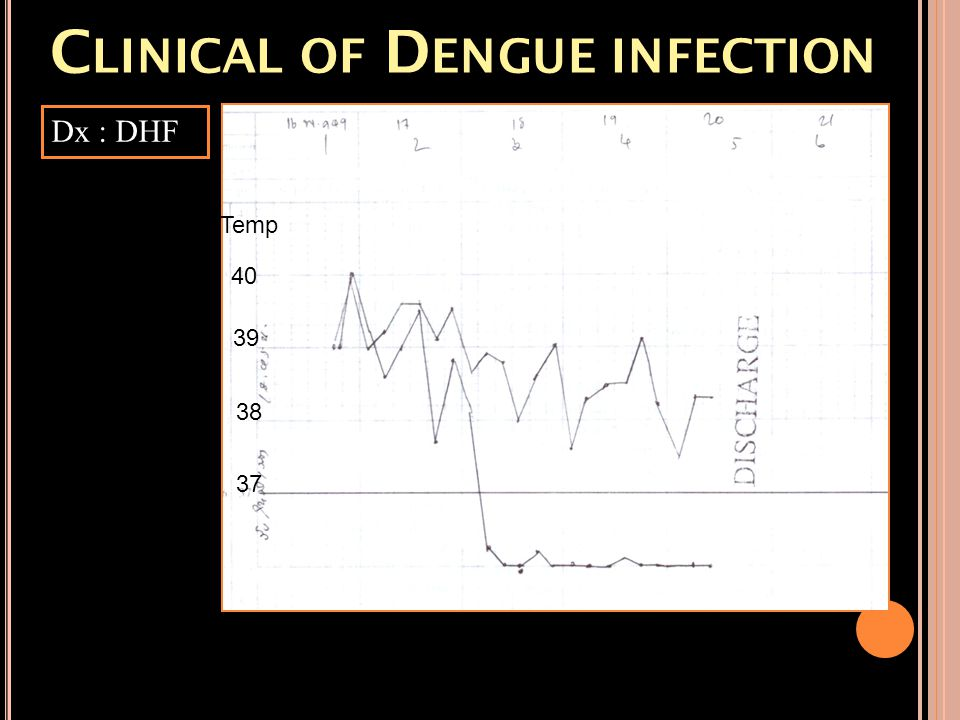 Clinical of Dengue infection