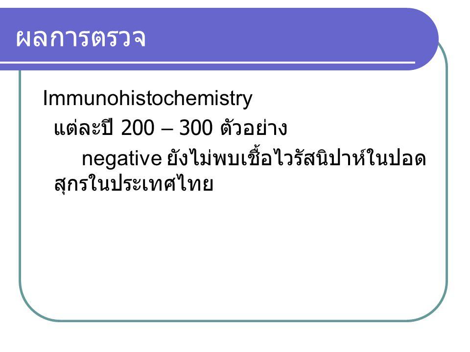 ผลการตรวจ Immunohistochemistry แต่ละปี 200 – 300 ตัวอย่าง