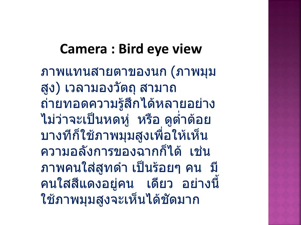Camera : Bird eye view
