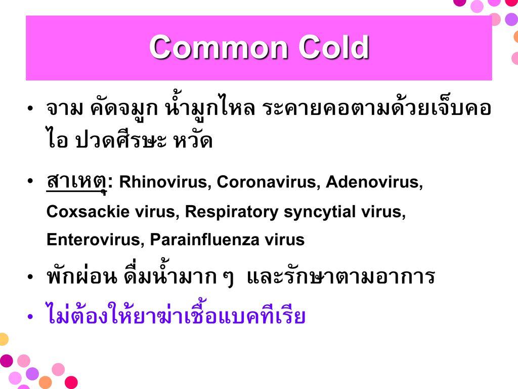 Common Cold จาม คัดจมูก น้ำมูกไหล ระคายคอตามด้วยเจ็บคอ ไอ ปวดศีรษะ หวัด.