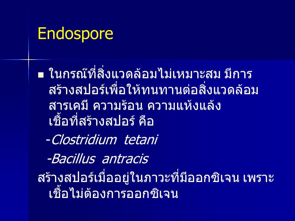 Endospore ในกรณ๊ที่สิ่งแวดล้อมไม่เหมาะสม มีการสร้างสปอร์เพื่อให้ทนทานต่อสิ่งแวดล้อม สารเคมี ความร้อน ความแห้งแล้ง เชื้อที่สร้างสปอร์ คือ.