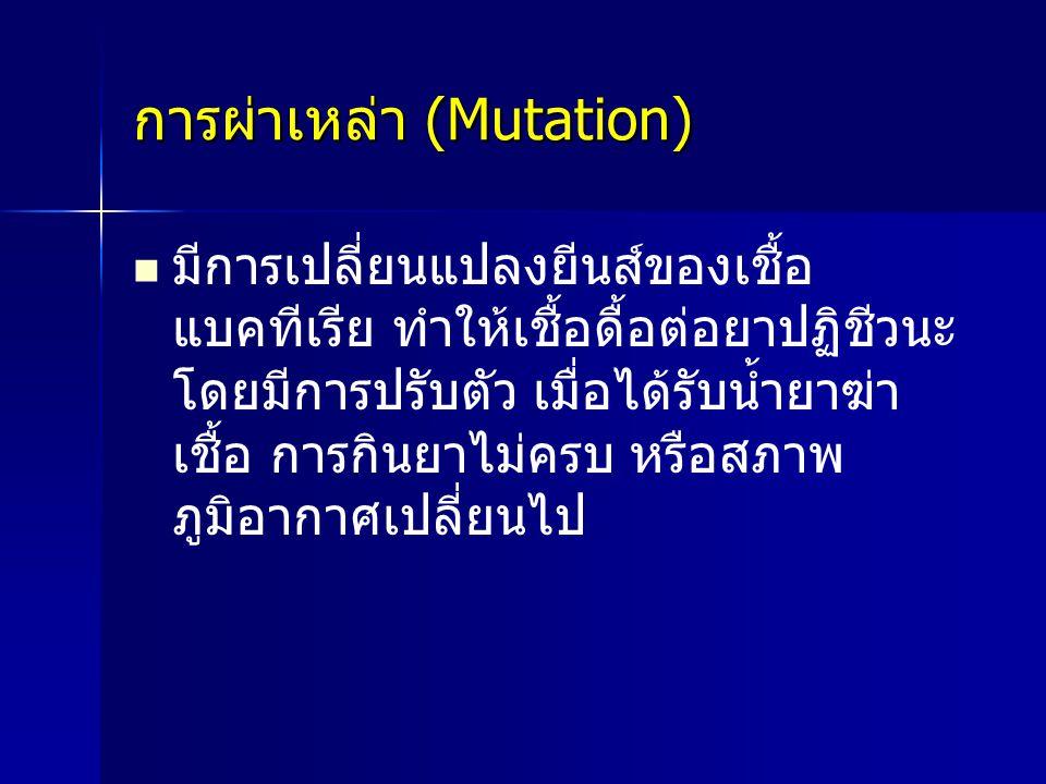 การผ่าเหล่า (Mutation)