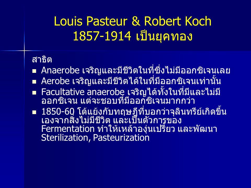 Louis Pasteur & Robert Koch 1857-1914 เป็นยุคทอง