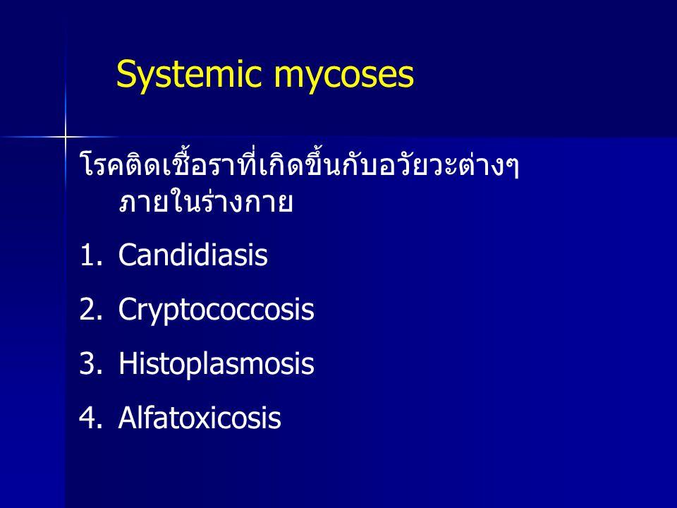 Systemic mycoses โรคติดเชื้อราที่เกิดขึ้นกับอวัยวะต่างๆภายในร่างกาย