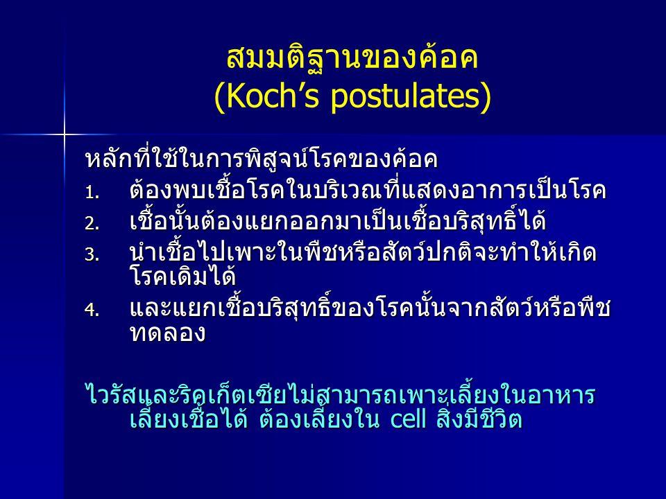 สมมติฐานของค้อค (Koch's postulates)