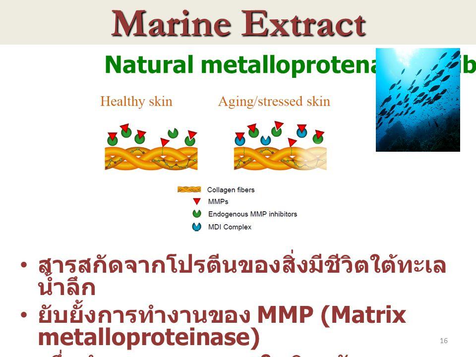 Marine Extract Natural metalloprotenase inhibitor