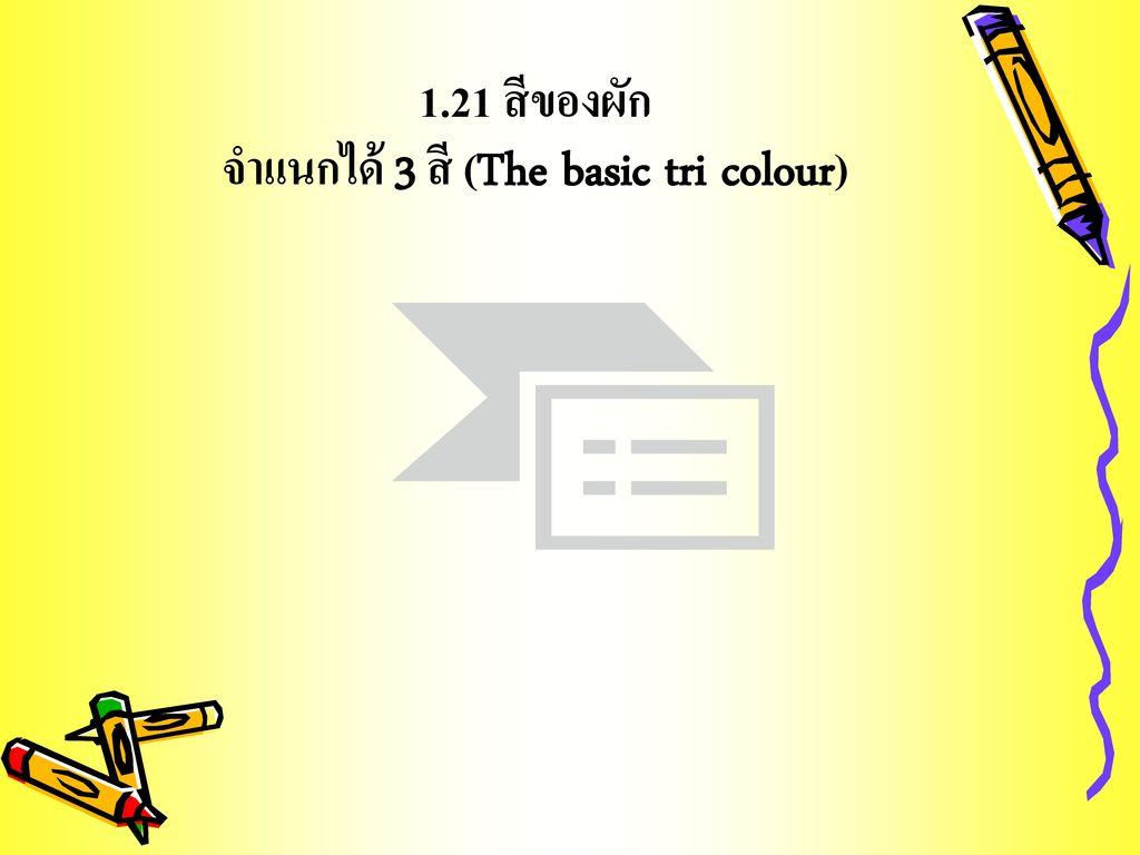 1.21 สีของผัก จำแนกได้ 3 สี (The basic tri colour)