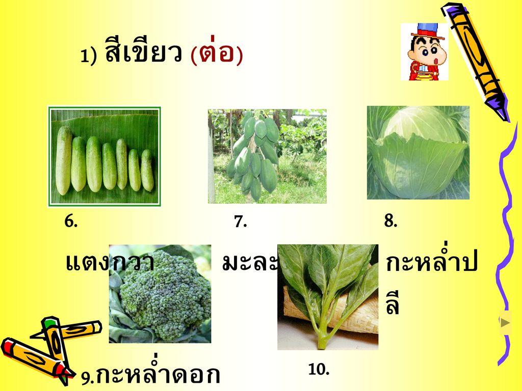 1) สีเขียว (ต่อ) 6.แตงกวา 7.มะละกอ 8.กะหล่ำปลี 9.กะหล่ำดอกอิตาเลี่ยน
