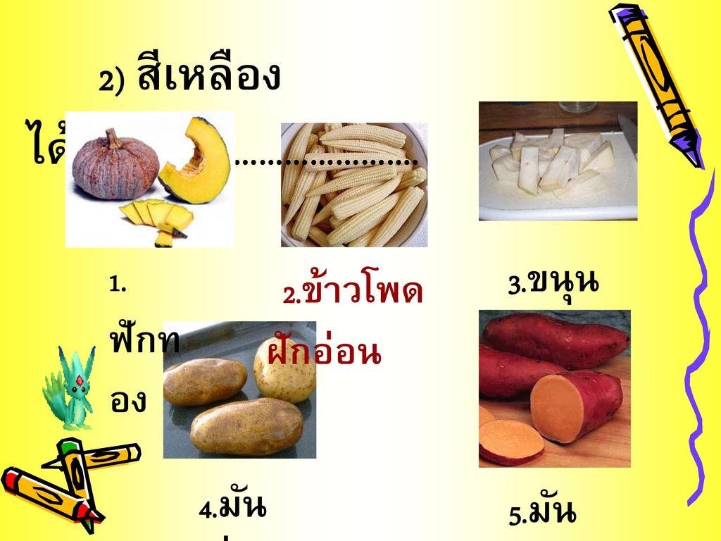 2) สีเหลือง ได้แก่…………………………….
