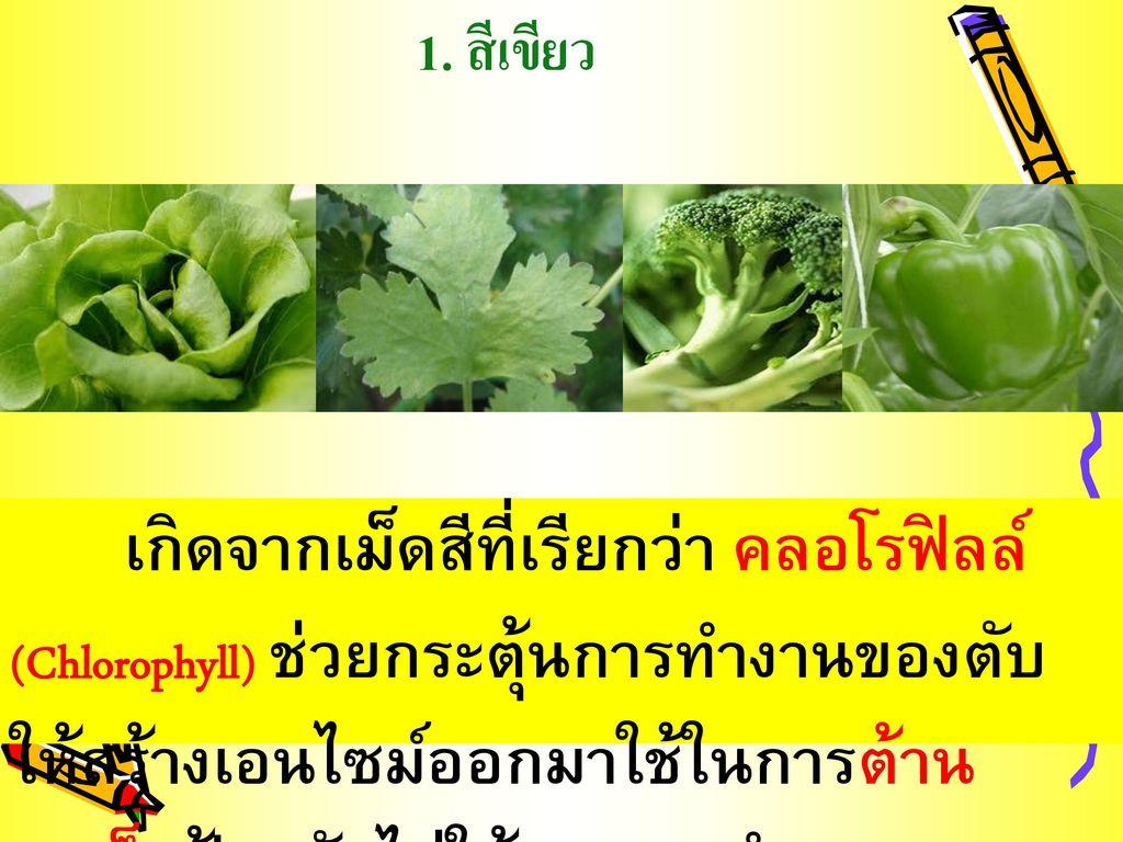1. สีเขียว