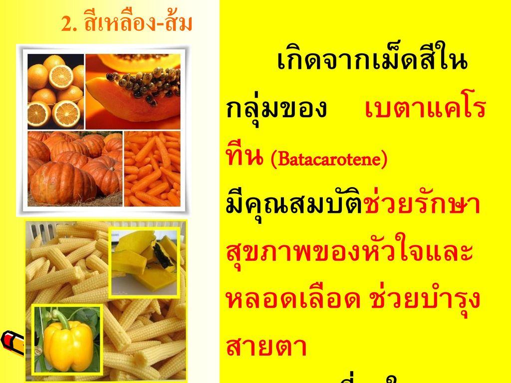 2. สีเหลือง-ส้ม เกิดจากเม็ดสีในกลุ่มของ เบตาแคโรทีน (Batacarotene)