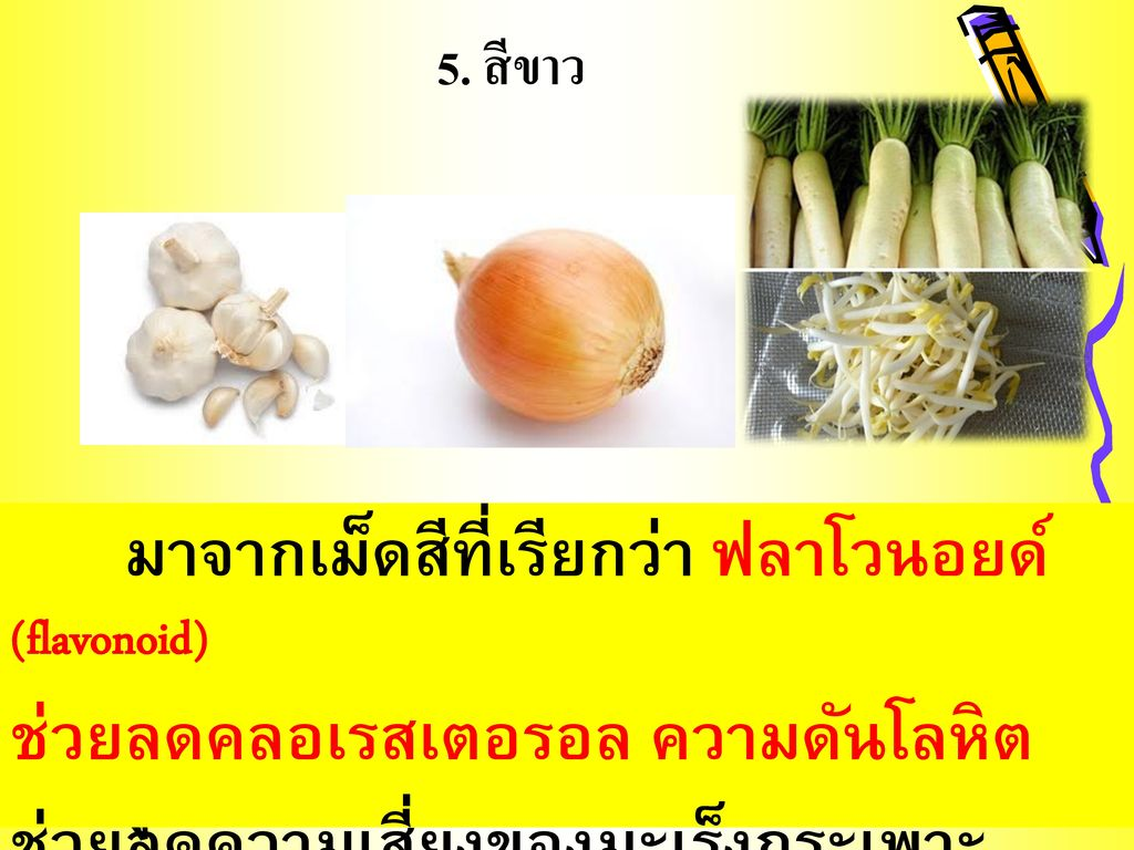 5. สีขาว มาจากเม็ดสีที่เรียกว่า ฟลาโวนอยด์ (flavonoid)